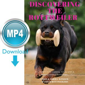 Discovering the Rottweiler